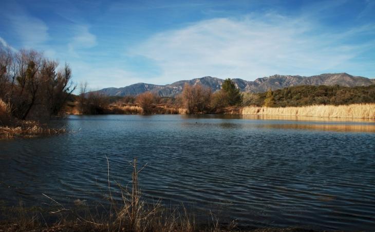 Rose Valley Upper Pond