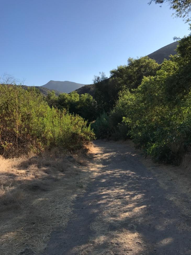 Hill Canyon Trail5